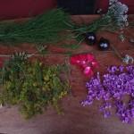 Blüten und Kräuter beim Trocknen